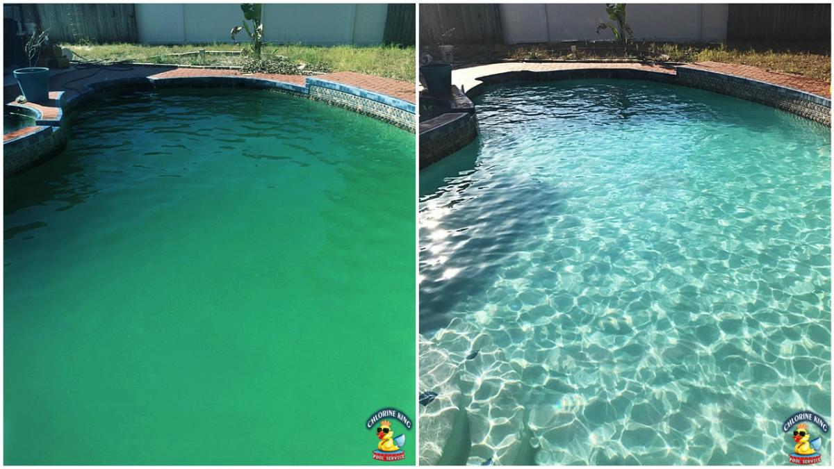dave green pool