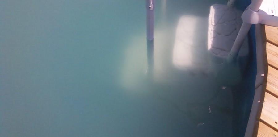 Cloudy Pool Water Chlorine King Pool Service Clarifier